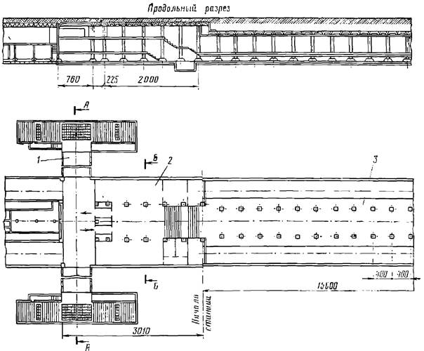 План и продольный разрез трехпролетной станции